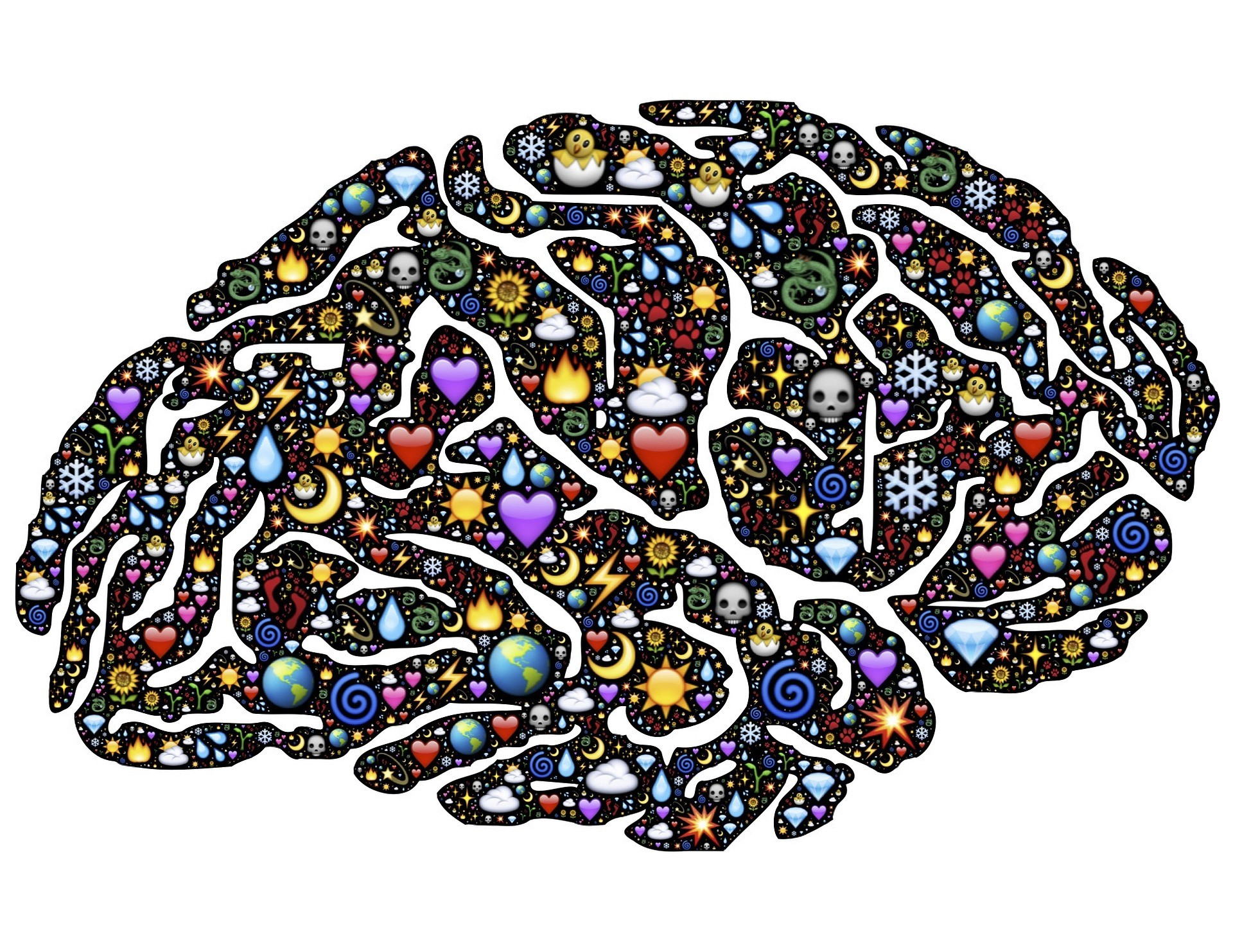 This Is Your Brain On Drugs – Any Questions?